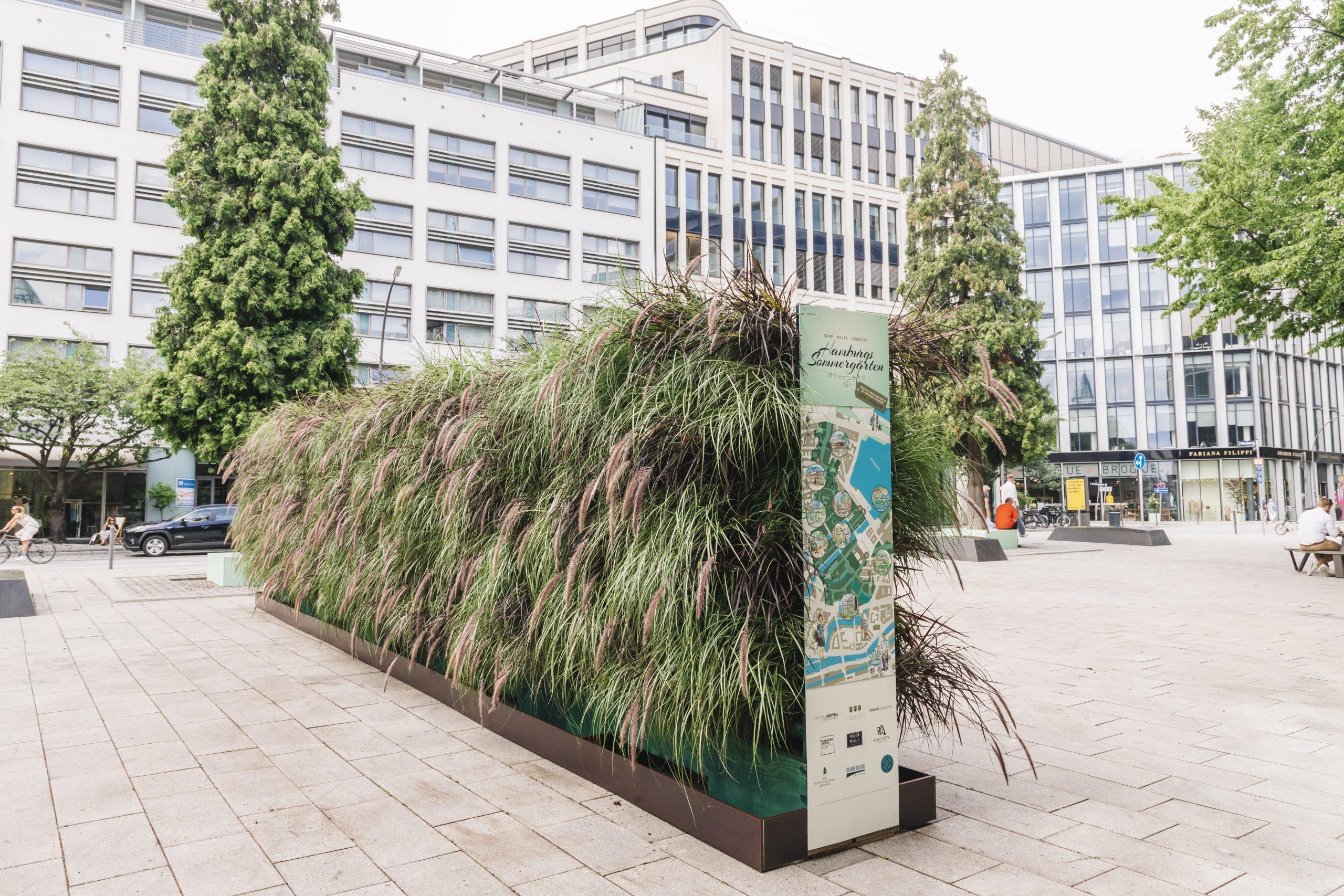 Grüne Wand an Hamburgs Sommergärten